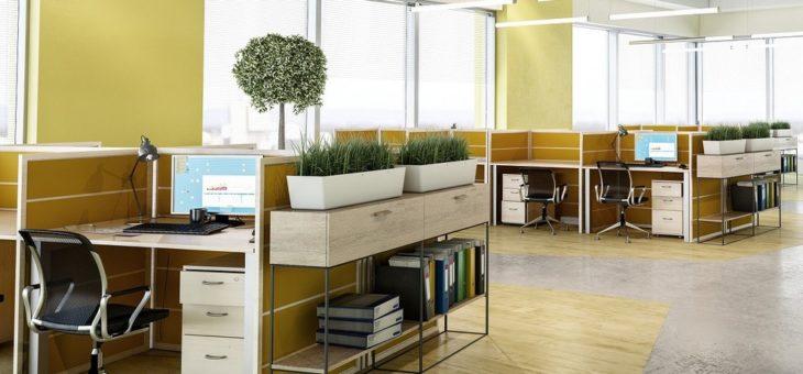 Location de bureaux : les différents types de baux
