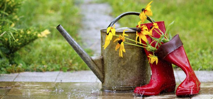 Entretenir son jardin en temps de pluie